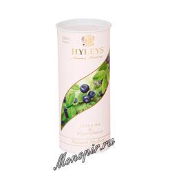 Hyleys Гармония Природы Суприм зеленый с черникой 100 гр (туба)